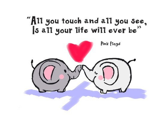 animals, elephants, love, pink floyd, quotes, sweet, text