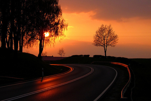 sunny, beautiful, photography, road