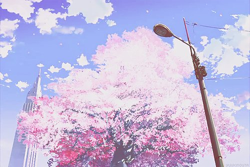5 cm per second, :3, adorable, amazing, anime, anime girl, art, aw, beautiful, cherryblossom, cute, draw, eyes, hair, kawaii, pink, pretty, sakura, sky, style, tree, tree pink, wonderful