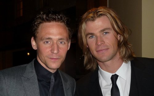 avengers, chris hemsworth, kittens, tom hiddleston - image ...