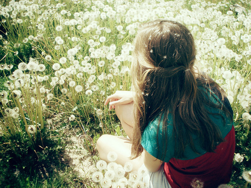 back, blonde, floral, girl, grass, hair, nature