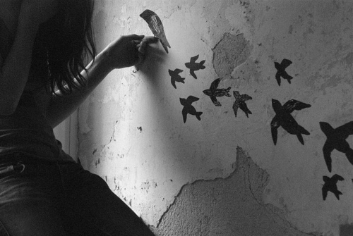 beautiful, birds, black and white, girl