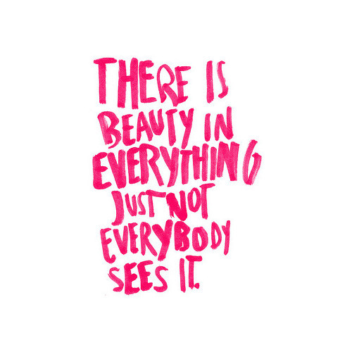 beauty, everything, pink, quote, quotes, text
