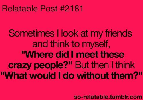 Quotes For Crazy Friends : Funny crazy friend quotes images pictures becuo