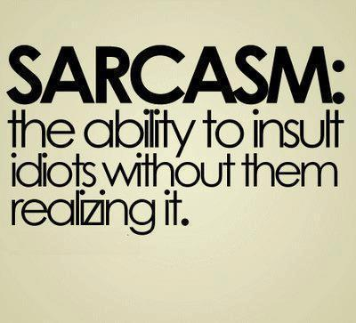 bitch, idiots, quotes, sarcasm