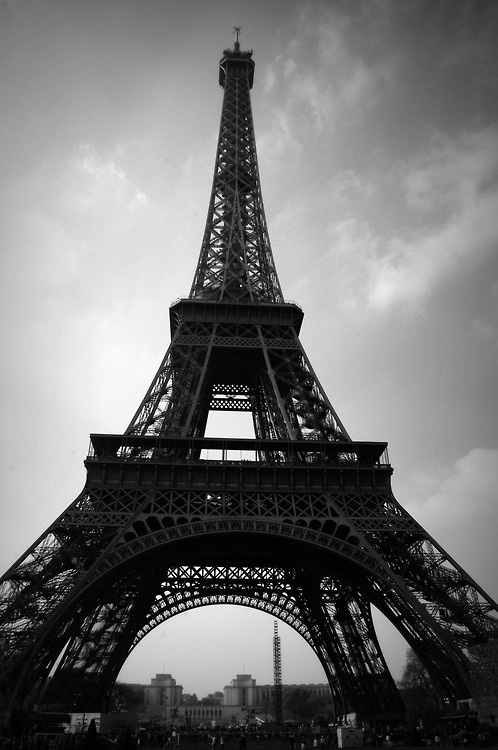 black and white, eiffel tower, paris, photography - image ...