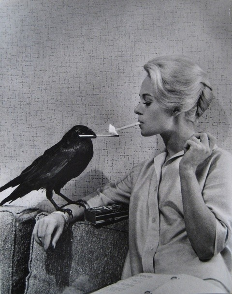black bird, girl, glamour and retro