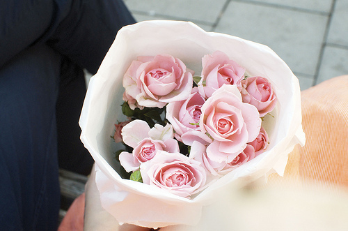 bouquet, cute, flower, flowers, green, lovely, nature, photo, photography, pink, rose, roses, so cute, sweet, vintage
