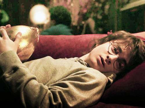 cute, daniel radcliffe, goblet of fire, harry potter