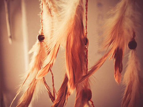 feathers, photography, pretty, vintage