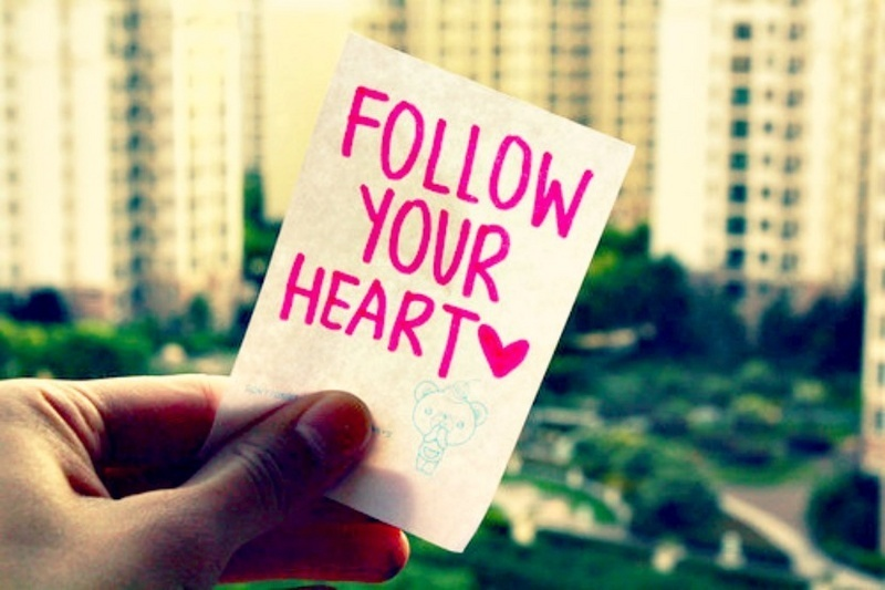 follow, heart, love, photography
