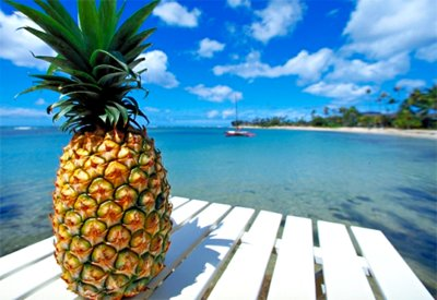 adorable, beach, blue, cool, cute, delicious, food, fruit, hot, love, ocean, palm trees, palms, photo, photograph, pineapple, pretty, sea, sky, summer, sun, water, yellow, yummy
