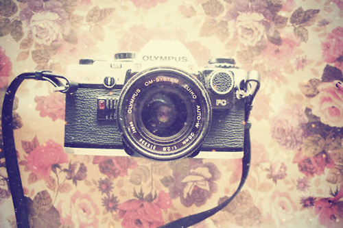 olympus, antique, beautiful, camera