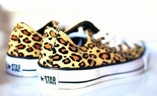 all star, converse, cool, cute, fashion, girl, leopard, pretty, print, shoes, sneakers, style, stylish