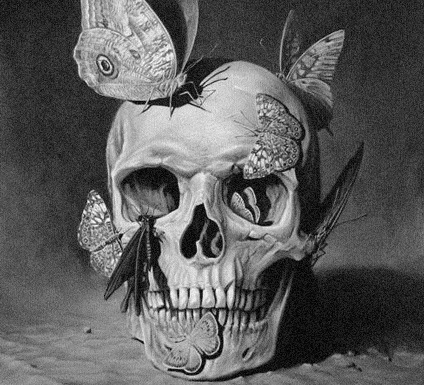 and, art, b&w, black, black and white, black&white, butterflies, butterfly, concept, conceptual, drawing, emotion, emotional, expressive, fragile, inspiration, inspirational, skeleton, skull, white, wings
