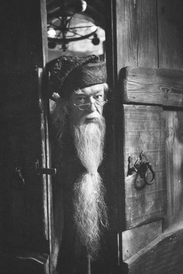 Black And White Dumbledore Harry Potter Hp Image