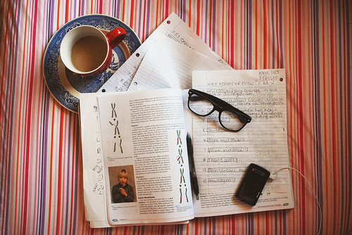 book, coffee, hipster, history, mp4, notebook, phone, read, study, vintage, zemire