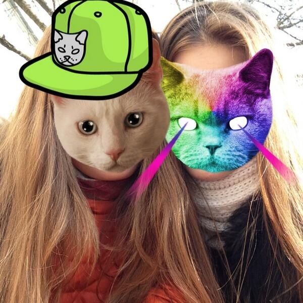 cat, cats, catwang, cute, friend, friend friends, friends, girl, girls, hai