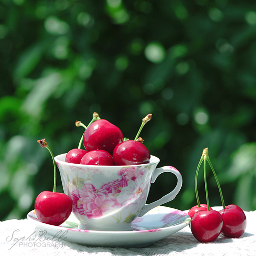 cherries, cherry, cup, cute