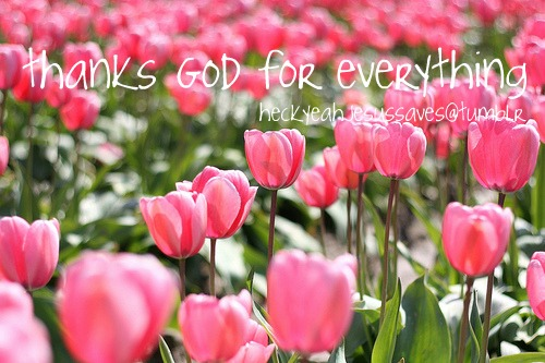 flowers, god, pink flowers, quotes