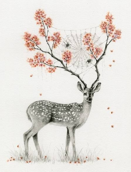 art, blog, creature, deer, dreaming, dreams, enchanting, flowers, frida, fridas peach, magic, pink, secret world, spider, spiderweb, thoughts, web, wonderland