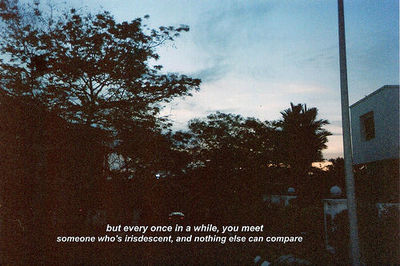 love, photography, quote, tumblr - image #650025 on Favim.com