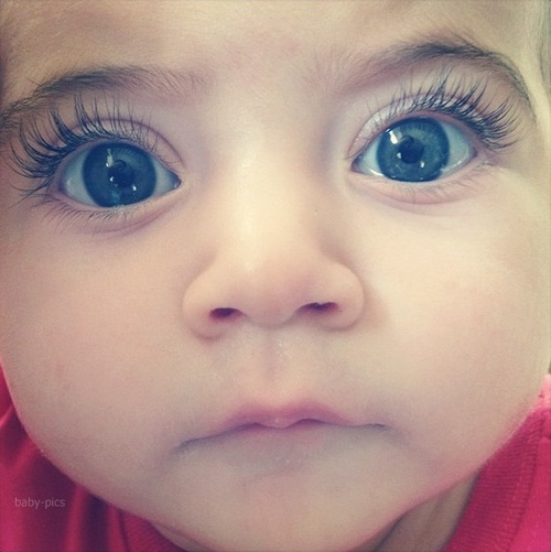 Blue Eyed Baby Girl Quotes: Omg, Adorable, Baby, Baby Sister