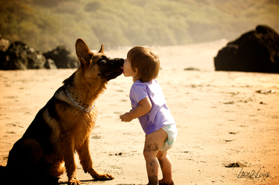 awesome, baby, beautiful, bestfriend, boy, child, cool, cute, dog, doggy, dogs, england, forever, france, german shepherd, infinity, kid, kiss, london, love, mascot, nature, new york, paris, pastor aleman, pet, pretty, puppy, young