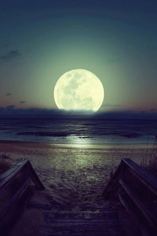 beach, cute, fondo, moon