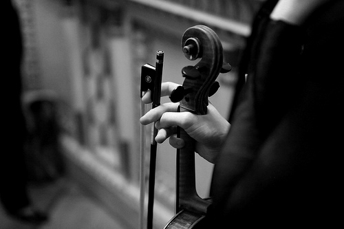 black and white, bow, music, musician, strings, violin