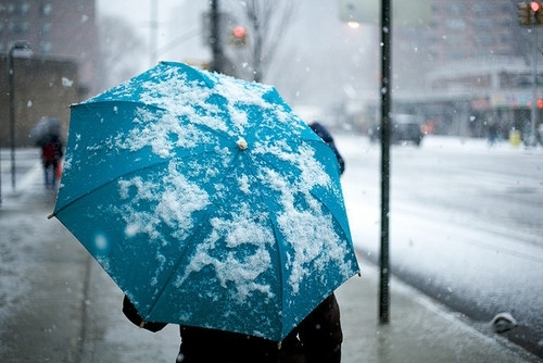 black, blue, coat, cold, freezing, girl, jacket, person, photo, photography, snow, snowing, umbrella, white, wind, winter