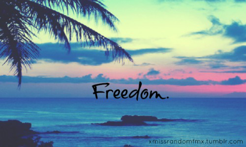 cute, free, freedom, life, life qoutes, ocean, truth